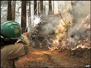 calif_fires_2008.jpg - 27921 Bytes